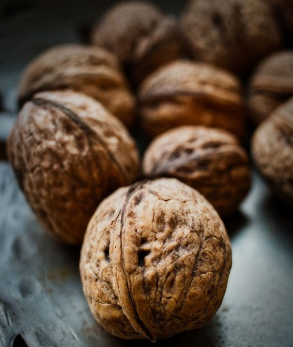 Walnut Suppliers