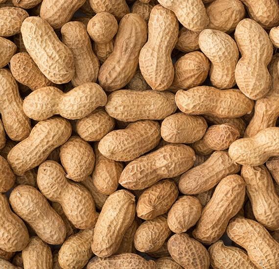 Buy Peanuts Online