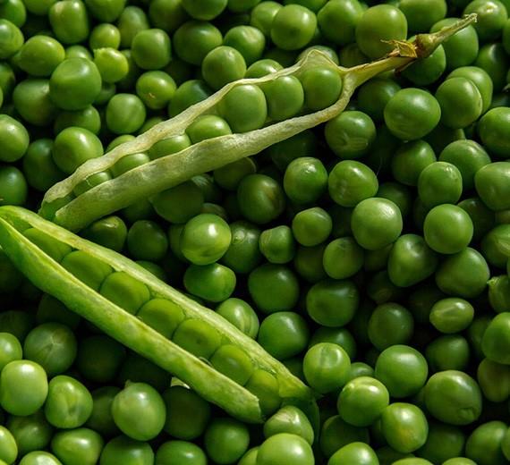 Buy Peas Online
