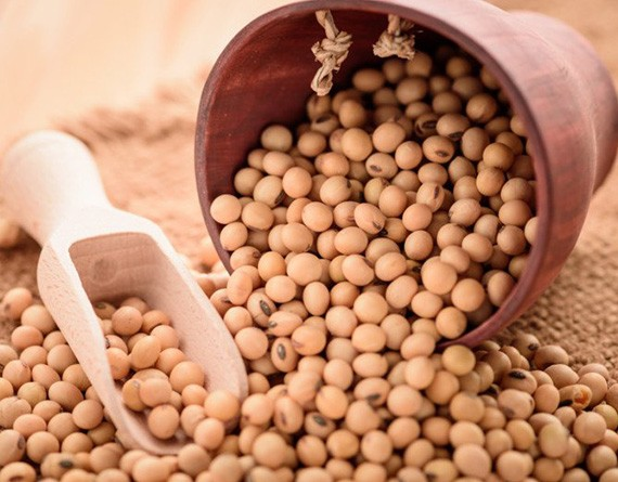 Buy Soybeans Online