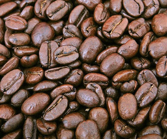 Coffee Beans Suppliers