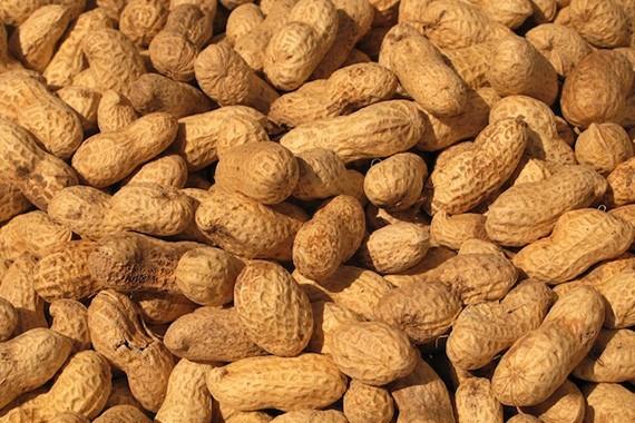 Peanuts Manufacturers
